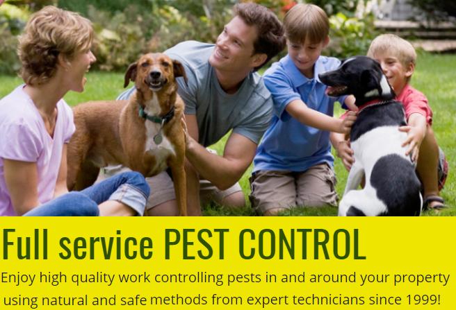 Above & Beyond Pest Control